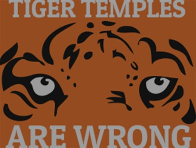 The Trouble with Tiger Temples