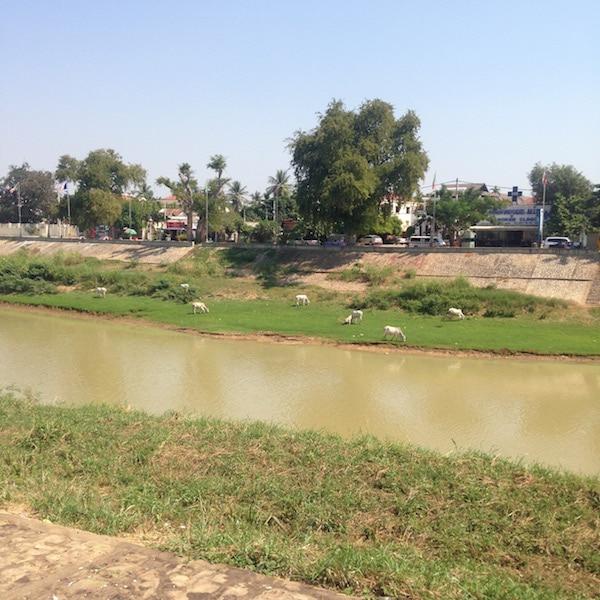 BattambangRiver