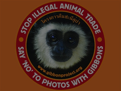 The Gibbon Rehabilitation Project – Protecting Thailand's Gibbons