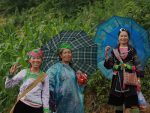 How to choose a Sapa homestay featured image