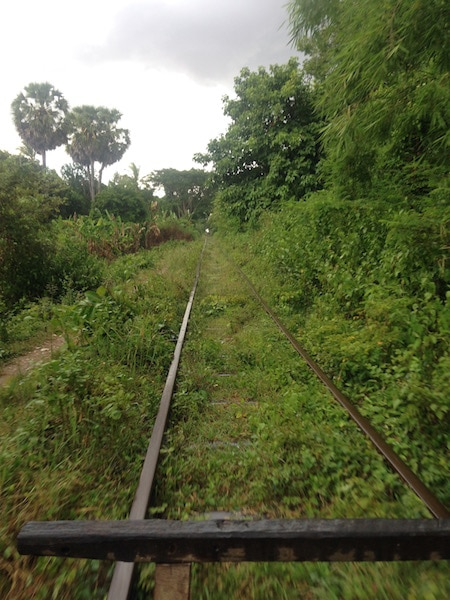 BambooTrain2