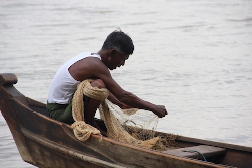 Irrawaddy Fisherman