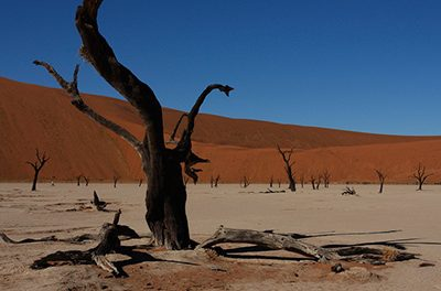 6 amazing attractions in Namibia