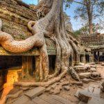 Favourite places in Cambodia