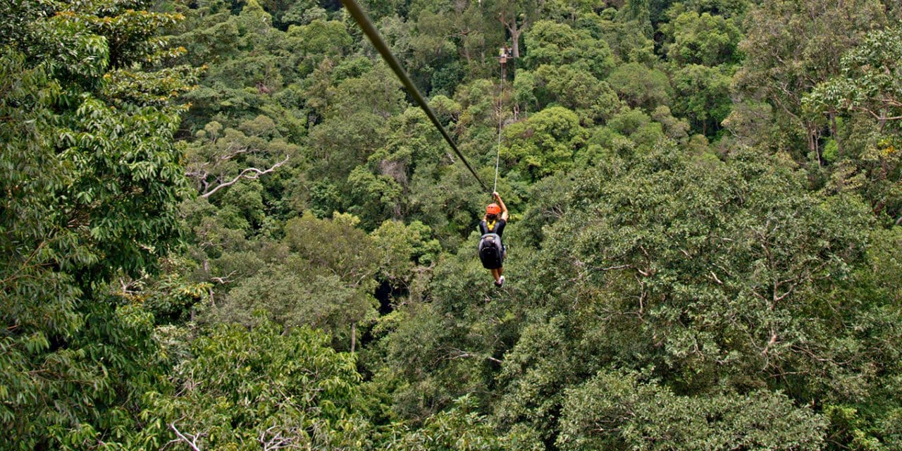 Rainforest Zip Lining in Langkawi