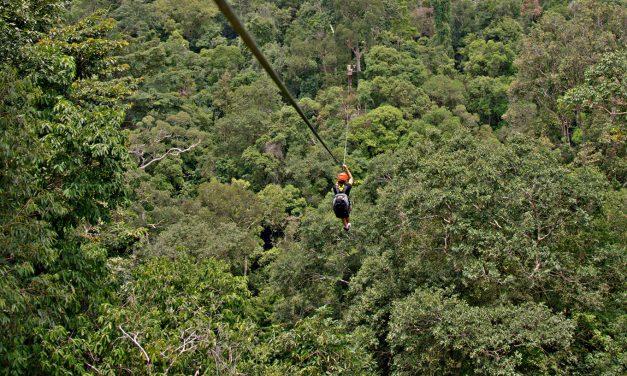Rainforest Zip Lining in Langkawi