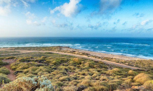 Exploring Australia's Coral Coast