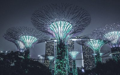 Backpacker's Budget Guide to Singapore
