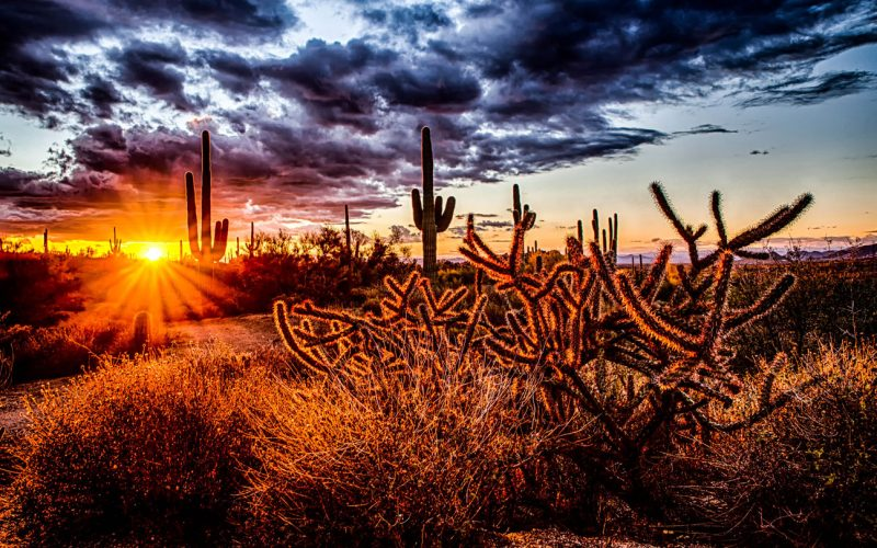 3 Must-Do Hiking Trips in Arizona