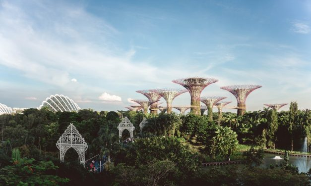 7 Activities That Can Make Your Singapore Trip a Luxurious One